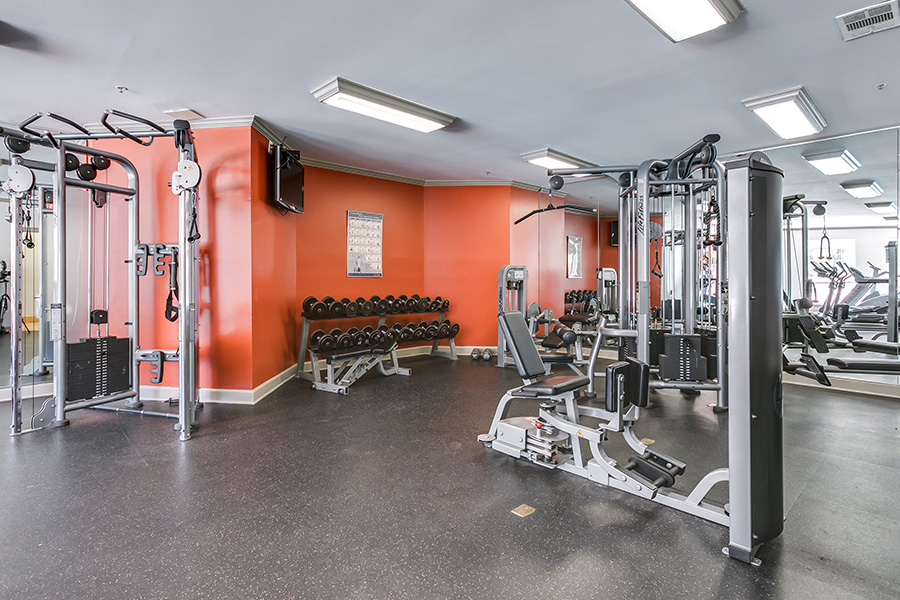 Community gym with a variety of workout equipment, padded flooring, several floor-length mirrors.