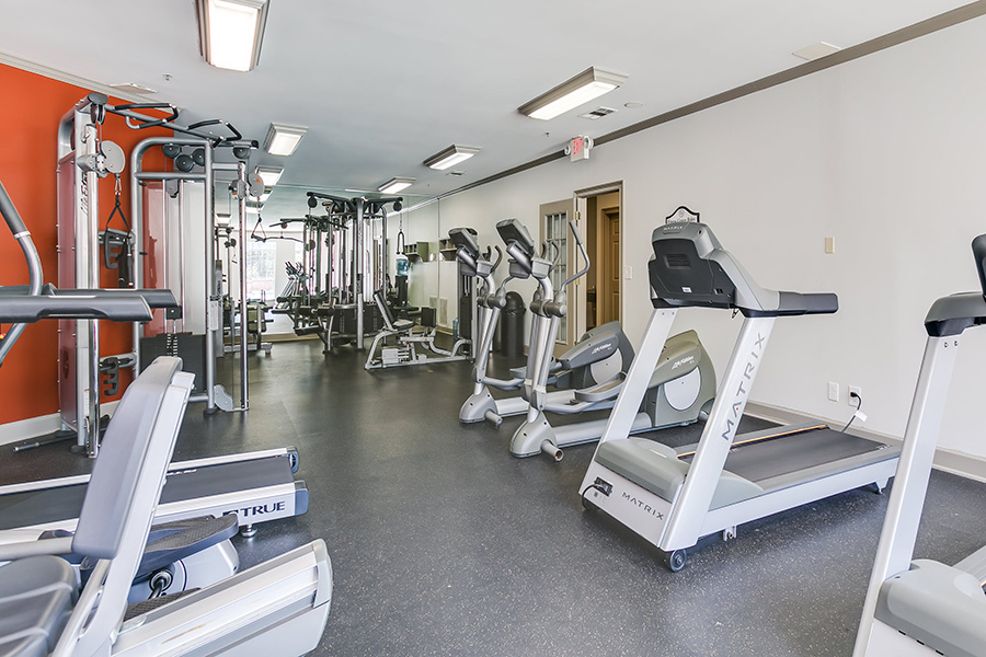 Community gym with a variety of cardio workout equipment and padded flooring.