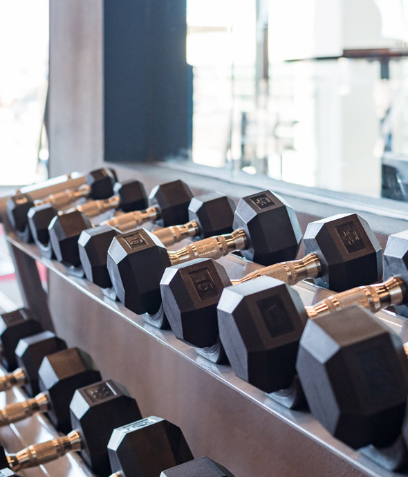clean and organized exercise weights on a steel shelf in front of a wall mirror