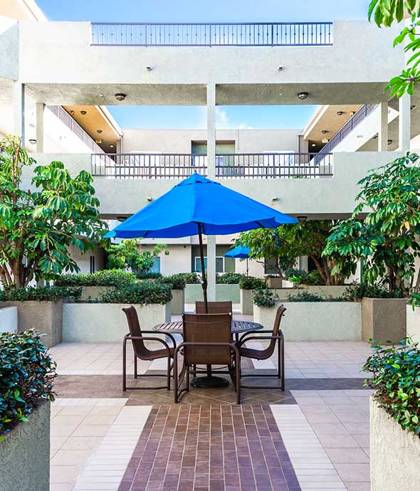 Courtyard with paved paths, patio furniture with umbrella, planters with large plants, and overhead walkway.