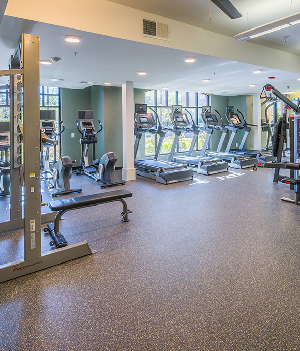 Fitness center with gym flooring, rows of cardio equipment and weights, and large windows.