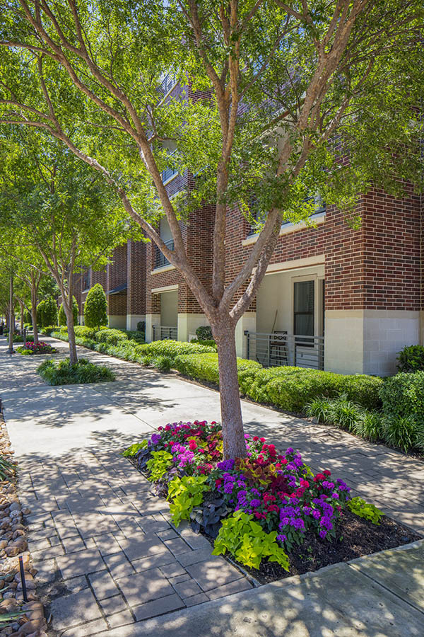 Sidewalks with lush landscaping, flowers, and tall trees in front of apartments.