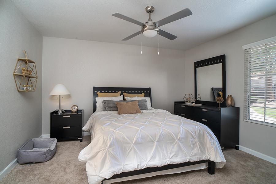 Bedroom with carpet, large platform bed, wood furniture, and large window.