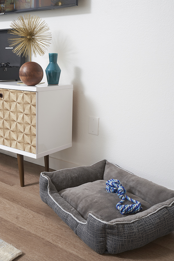 Living room with media console and large dog bed with rope toy.