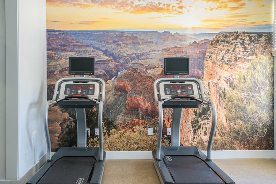 Fitness center with canyon wall mural and treadmills.
