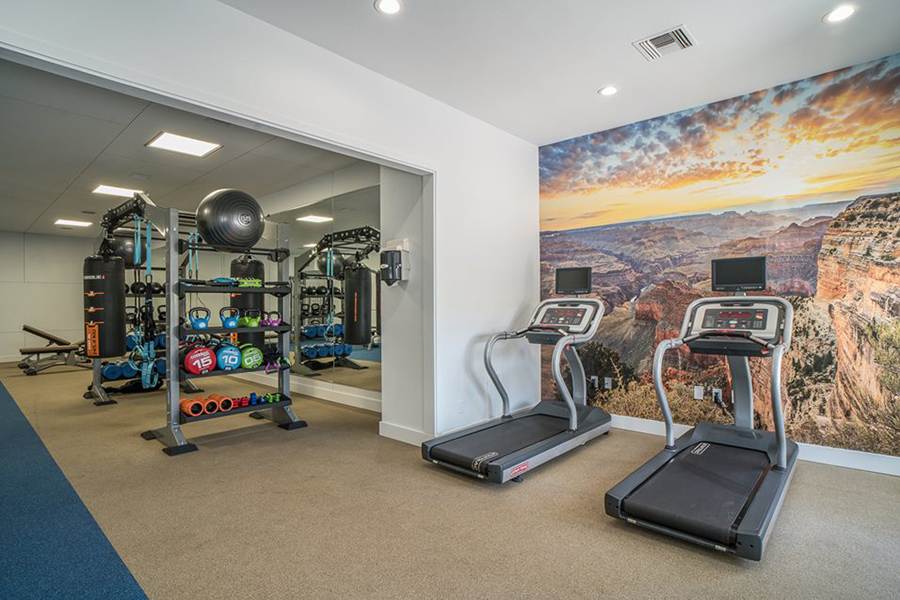 Fitness center with canyon wall mural, treadmills, and calisthenics equipment.