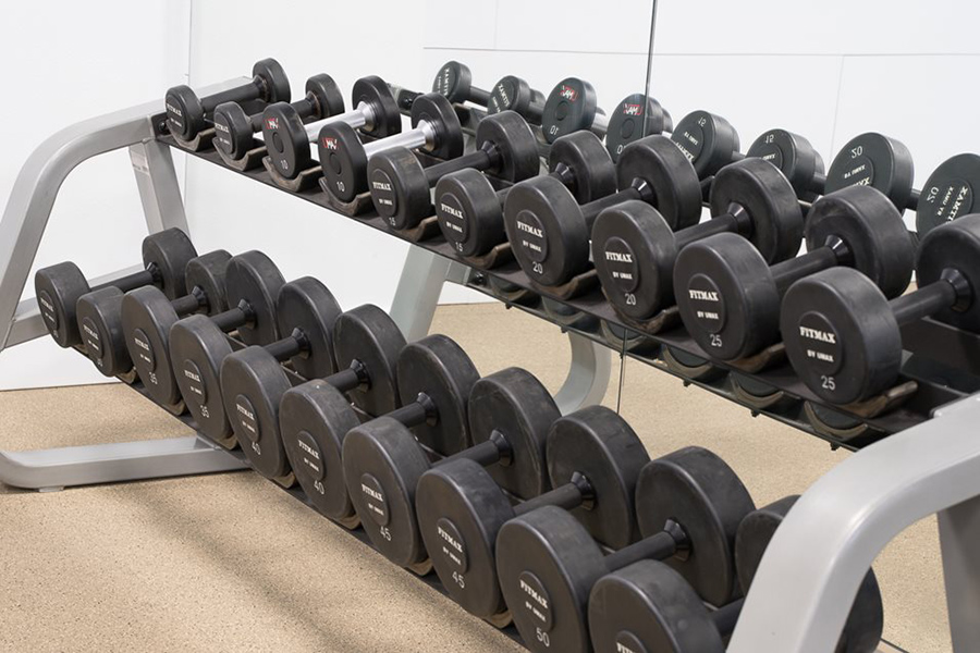 Detail of fitness center dumbbell rack with weights from 5 to 50 pounds.